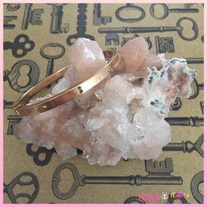 Fossil EUC Rose-Gold Steel Keyhole Bangle